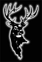 Antlered buck logo of artist Luke Buck